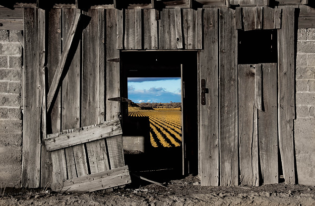 Fine Art Photography American farm life