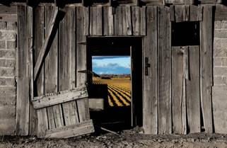 Fine Art Photography American farm life
