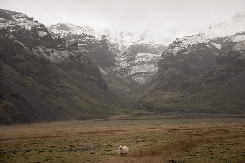 Sheep's Pass