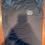 Thumbnail: Black Stamey's NC Pig LogoT-Shirt