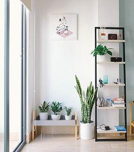 apartment-clean-contemporary-2826787.jpg