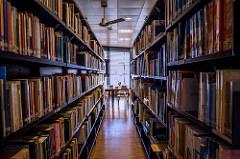 El niño en la gran Biblioteca