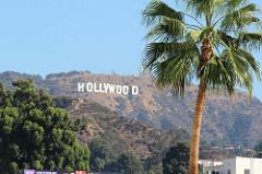 La creatividad agoniza…al menos en Hollywood