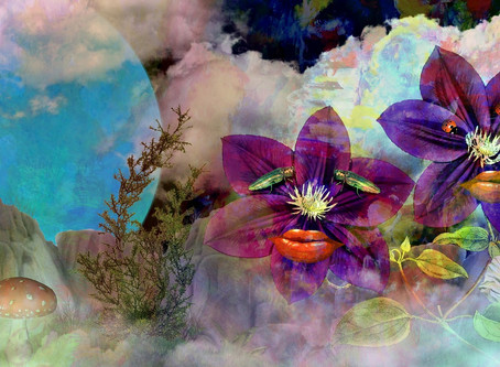 Psychedelics & Placebo: Our own Ido Hartogsohn was interviewed for VICE. Check it out