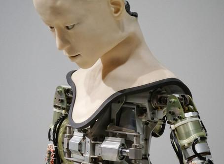 From Homo Sapiens to Robo Sapiens: The Evolution of Intelligence