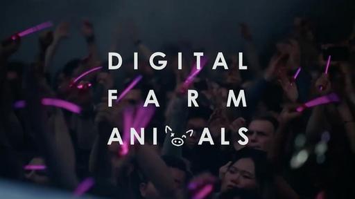 Digital Farm Animals - Ministry Of Sound London