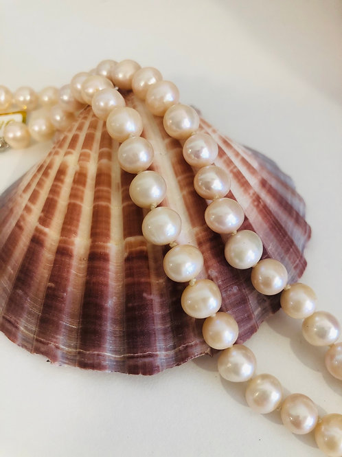 Pink Freshwater Pearl Short Necklace
