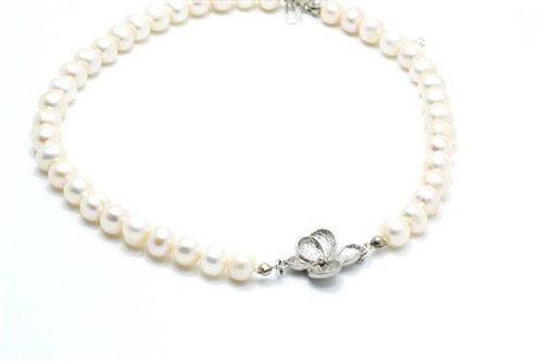 Plumeria Pearl