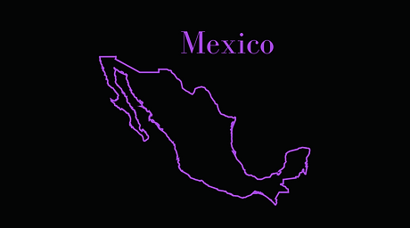 Mexico website.png