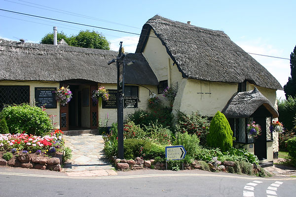 The Thatched Tavern in Maidencombe