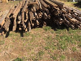 竹、木材の回収案件