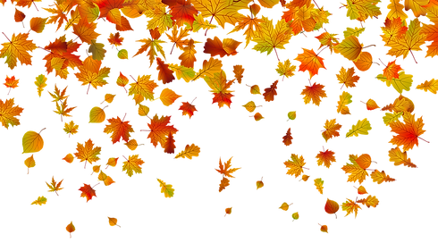 Fall Clipart.png