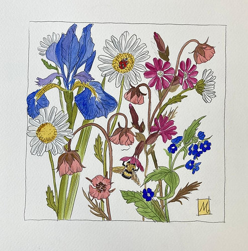 Marie - Therese King Wildflower details with daisies and Latin names