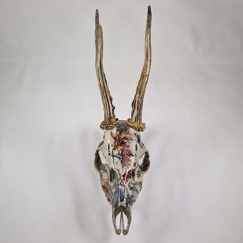 Jo Verity Decoupage Roe Deer Skull with Honeysuckle and Bees