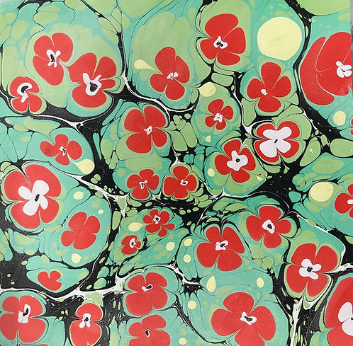 Marie- Therese King 'Japanese Blossom'