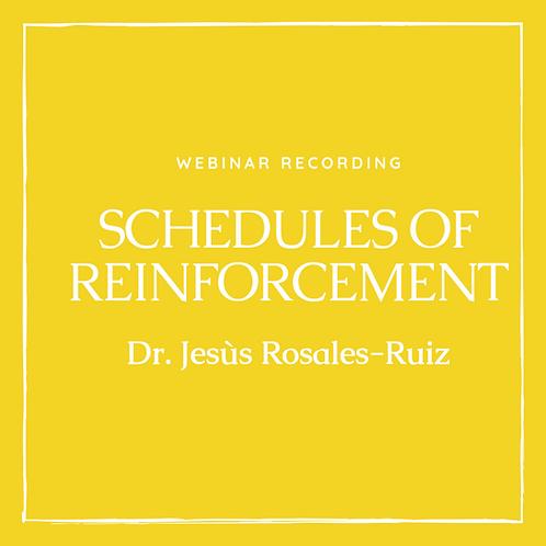 Webinar With Dr. Jesús Rosales-Ruiz: Schedules of Reinforcement