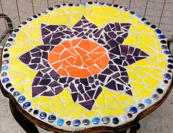 Mosaic SNFLR (1)