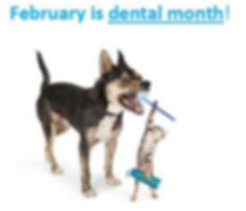 Dental month1.jpg