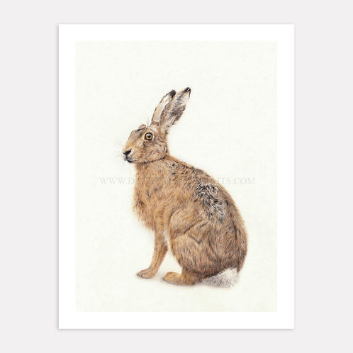 Hare and Now - Limited Edition Print
