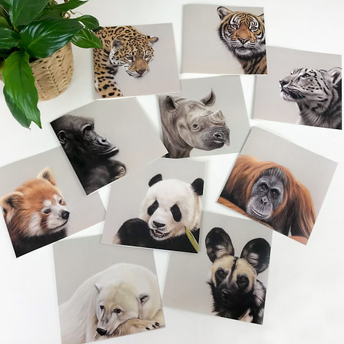 Endangered Species Greetings Cards - Pack of 10