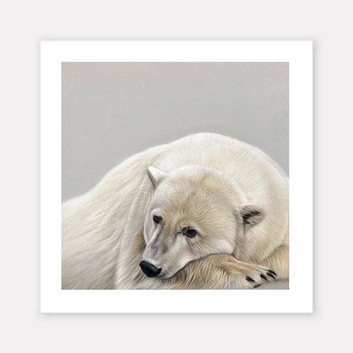 The Polar Bear - Limited Edition Print