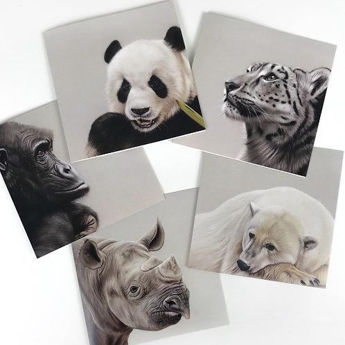 Endangered Species Greetings Cards - Set 1 - Pack of 5