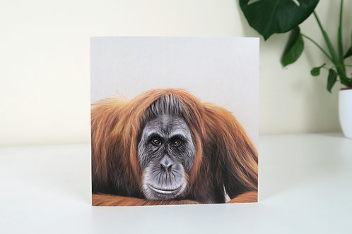 The Orangutan - Greetings Card