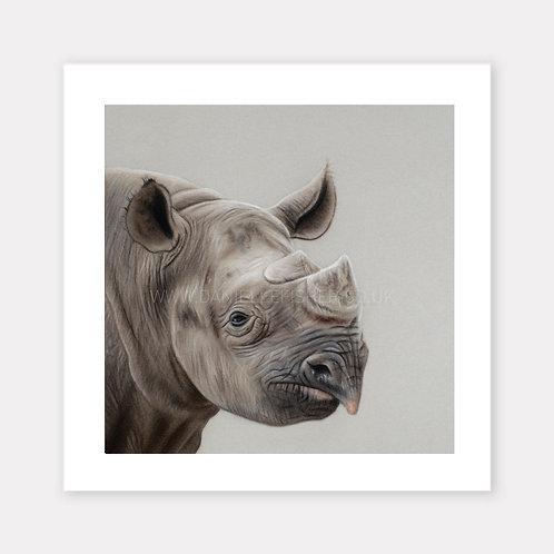 The Black Rhinoceros - Limited Edition Print