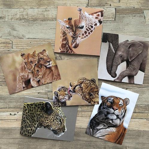 Wildlife Greetings Cards - Pack of Six