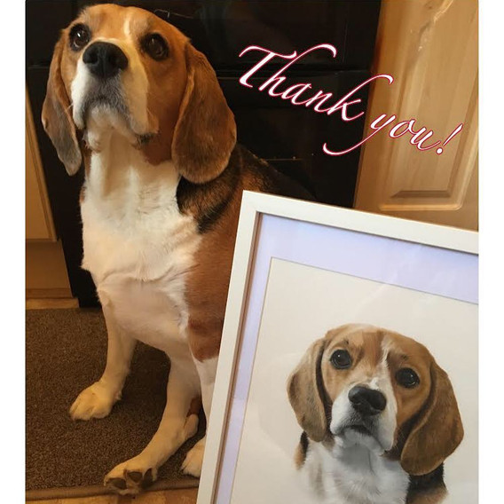 A lovely thank you photo from Dotty's owner!