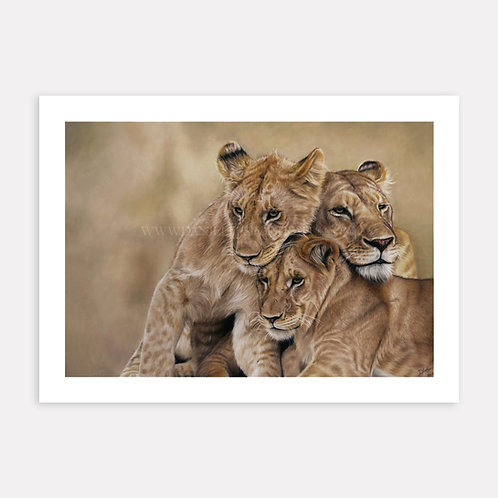 Her Pride - Limited Edition Print