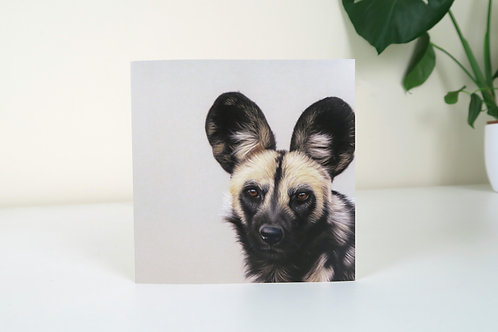 The African Wild Dog - Greetings Card