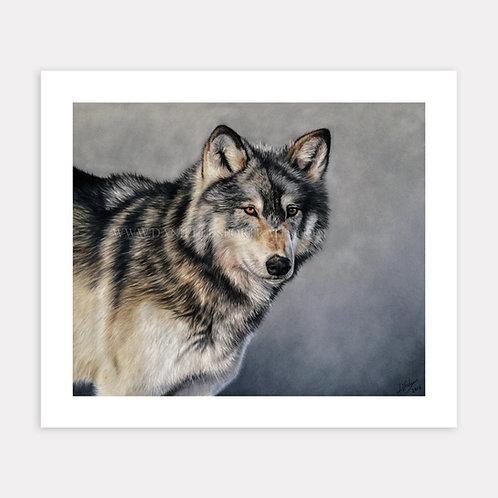 Nuka - Limited Edition Print