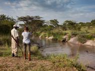 Serengeti Migration Camp - activities -