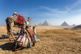 Egypt. Cairo - Giza. General view of pyr