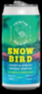 Snowbird_mockup_LO.png
