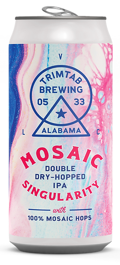MosaicSingularity2020_mockup_LO.png