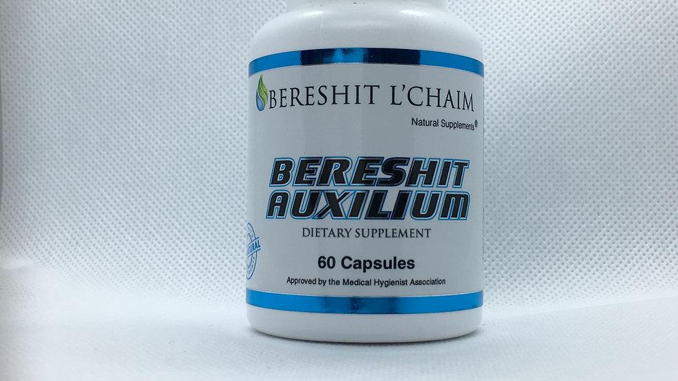 BERESHIT AUXILIUM
