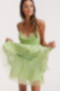 Mini_Tutu_Skirt_Dress.jpg