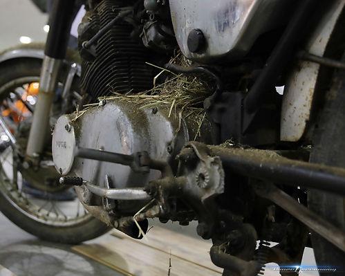 SMS Bikes10.jpg
