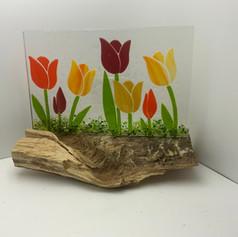 Tulip Garden on a Log