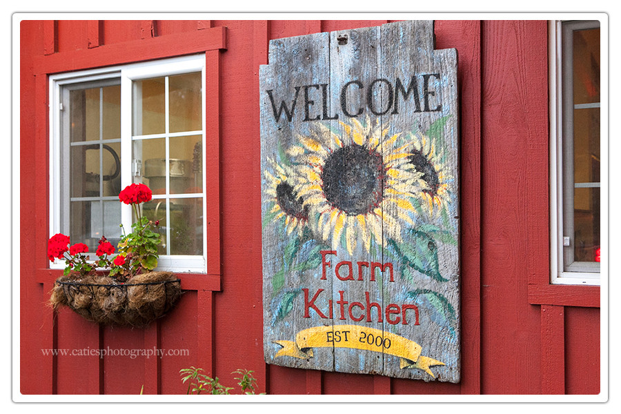 port-gamble-farm-kitchen-wedding8