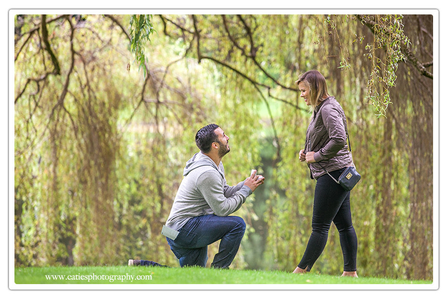 bainbridge island proposal photography