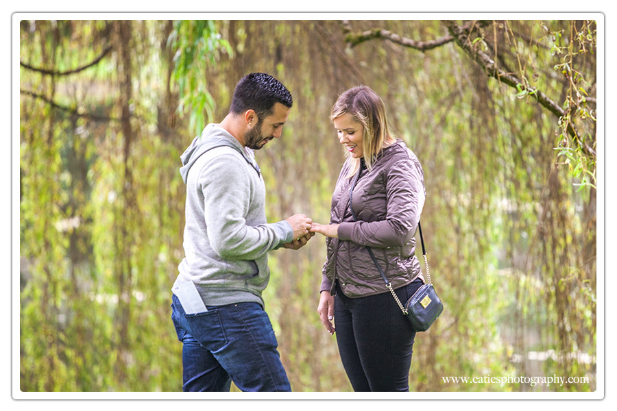 say yes - engagement photography