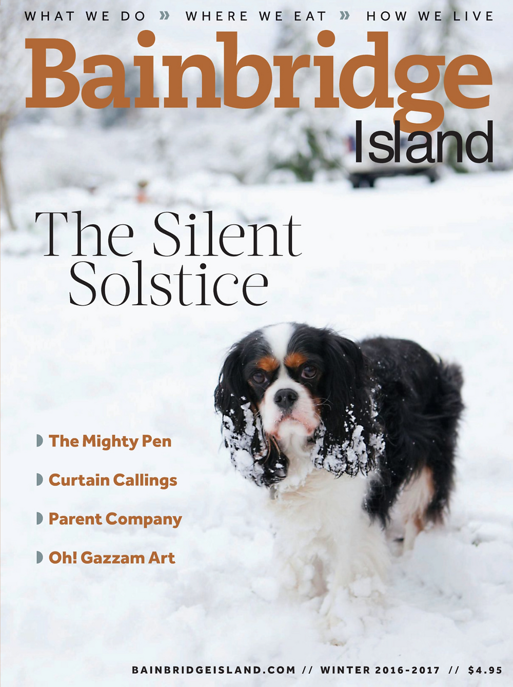 bainbridge island magazine winter