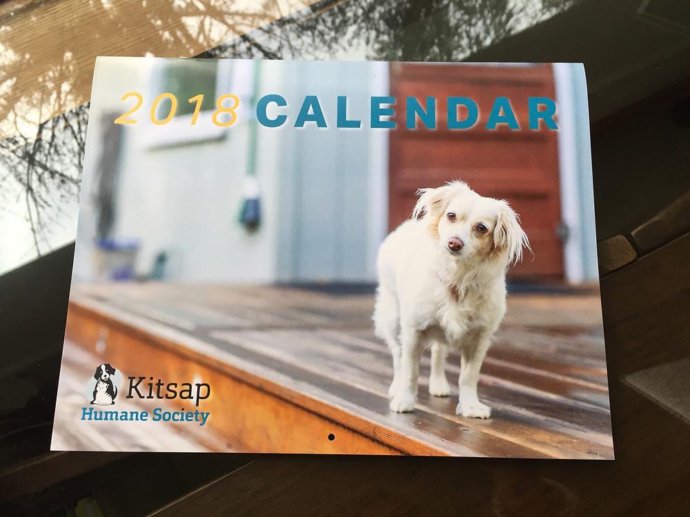 kitsap humane society pet photographer