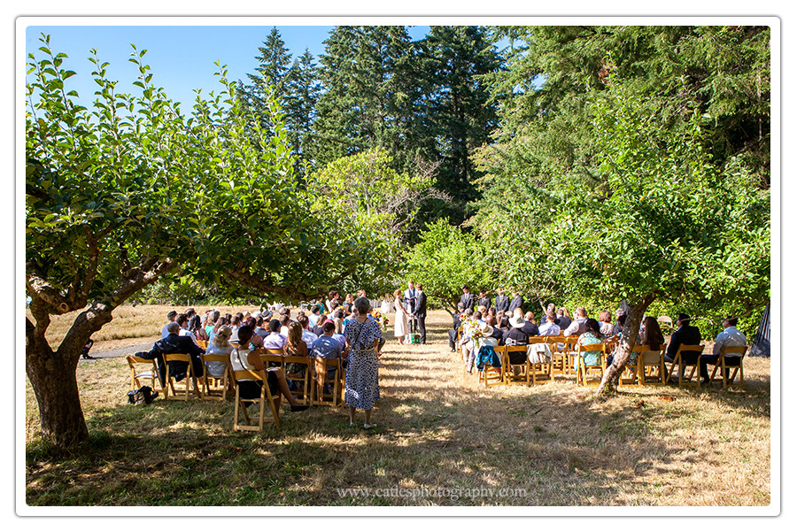 outdoor ceremony bainbridge island wa photographer