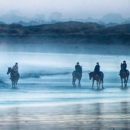 A few of the racehorses down the beach.