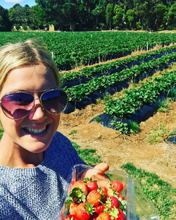 Foraging for berries! #sunridgestrawberries #blackberries #organic #antioxidants