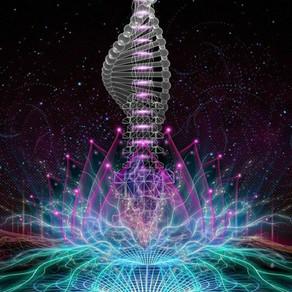The Ancestral Link: Transcending Our Karmic Past